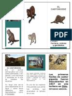 EL CASTOROIDE.docx