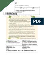 Evaluación Unidad IV (4°Básico)