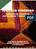 Orantes y Burguete (coord.)-Justicia indígena. Derecho de consulta, autonomias y resistencias