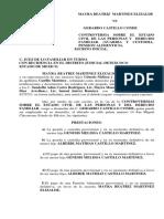 demanda mayra.docx