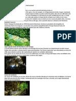 Lugares Turísticos de Alta Verapaz y a Nivel Nacional