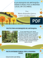 PACTO POR LOS BOSQUES DE ANTIOQUÍA – PACTO INTERSECTORIAL POR LA MADERA LEGAL EN COLOMBIA.