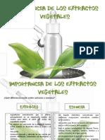 """""""Caracterización de Los Aceites Esenciales"""""""