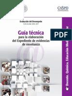 GUIA QUIMICA MAESTRO.pdf
