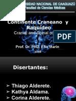 Continente Craneano y Raquídeo 2016.Pptx