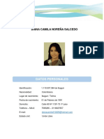 HV - DIANA NOREÑA 2019.docx