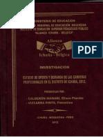 Investigación Plácido Calderon Mamani.pdf