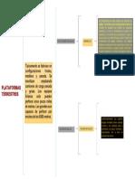 PLATAFORMAS TERRESTRES.docx