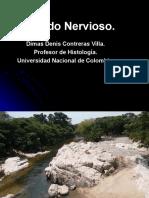 Tejido Nervioso. 2.