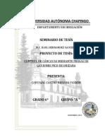 Control_de_carcavas_mediante_presas_de_g.docx