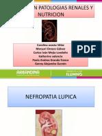 exposicion patologias renales