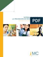 Sistema_gestion de Preveneción de Riesgos Laborales