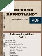Informe Brundtland - Ds