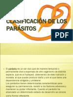 10.-Clasificacion de los parasitos..ppt