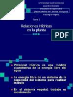 potencial-hidrico.ppt