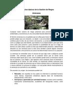 Conceptos básicos de la Gestión de Riegos.docx