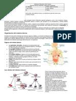 guia sistema inmunologico.docx