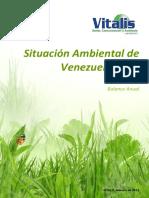 Situacion-Ambiental-2015-VITALIS.pdf