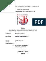 MALFORMACIONES CONGENITAS UROGENITALES.docx