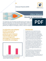 Resumen Ejecutivo Libro Blanco La Drecci n de Organizaciones Por Proyectos-Gu a Para Directivos