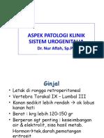 8.0 PK Sist.urogenitalia
