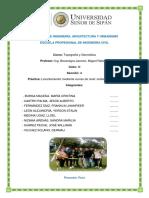 INFORME 10 EDITADO.docx