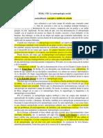 Tema 07 Resaltado (1).docx