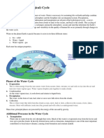 The Water Cycle Info Sheet