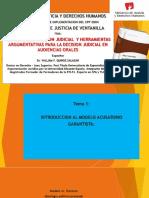 Tecnicas Direccion de Audiencia Orales y Argumentativas Para La Decision Judicial Tumbes 2018