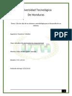 INFORME DE EL CICLO DE VIDA DE UN SISTEMA (1).docx