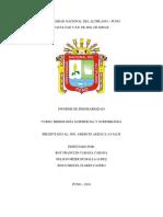 informe-permeabilidad.docx