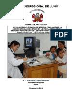 Perfil de Proyecto Atencion Primaria de Salud.pdf