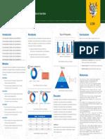 Estructura Del Poster - Ingenierías