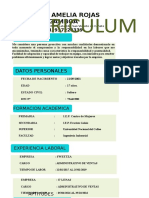 CURRICULUM-Maebl.docx