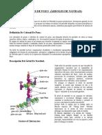 Ubicacion, Caracteristicas de los Pozos y Arboles de Navidad.doc