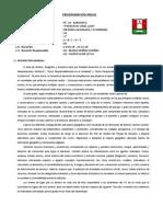 PROGRAMACION DE HISTORIA 5° 2018.docx