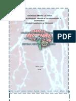 neurotransmisores y sinapsisrevisionbibliografia 2016.docx