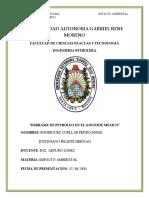 DERRAME-DE-PETROLEO-EN-EL-GOLFO-DE-MEXICO.docx
