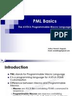 PML Basics.pdf