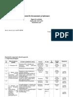 raport de activitate CDI