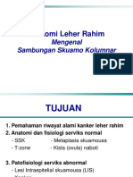 Materi 2_Anatomi,Histologi,Fisiologi Serviks Uteri_Dr.dr.Laila,Sp.OG(K).ppt