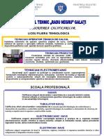 Descriere_calificari_CT_RADU_NEGRU_2018_2019.docx