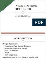 Brain Mechanisms of Hunger