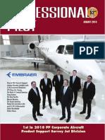 Professional pilot survey report