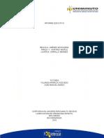 1- INFORME EJECUTIVO CON PLANTILLA LISTO.docx