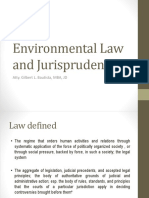 Environmental Law and Jurisprudence