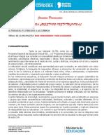 PROYECTO ESI UNA CUESTION INSTITUCIONAL.pdf