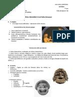 Grécia - Religião e cultura.pdf