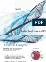 Sindromul Wagner.pptx