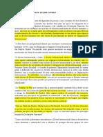 Fichamento - Livro Declaração Universal de Direitos Humanos - Felipe Isa.docx